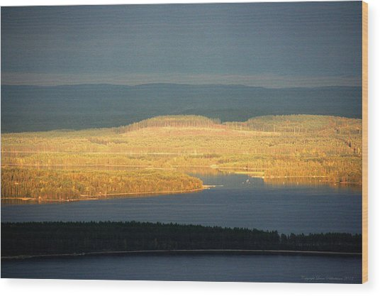 Golden Shores Wood Print