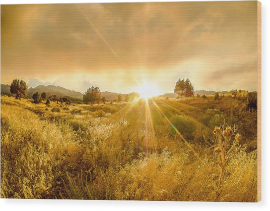 Golden Smoke Wood Print