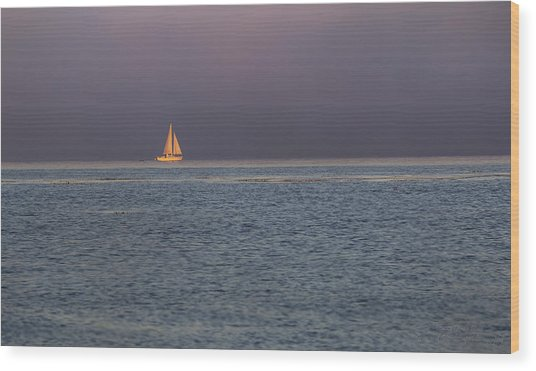 Golden Sunrise Sails By Denise Dube Wood Print