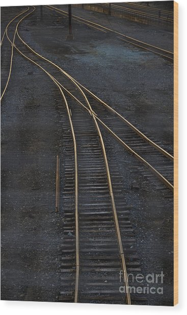 Golden Tracks Wood Print