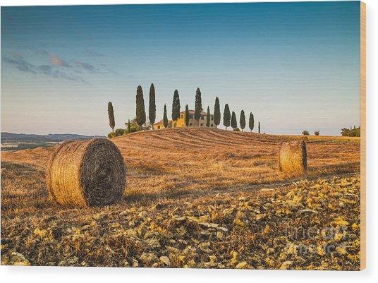 Golden Tuscany 2.0 Wood Print