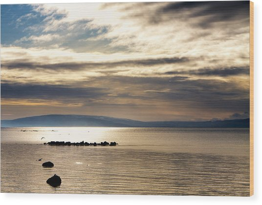 Golden Waters Of Galway Bay Wood Print by Mark Tisdale