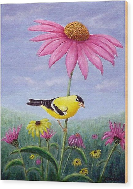 Goldfinch And Coneflowers Wood Print