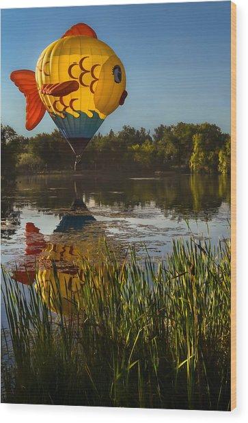 Goldfish Reflection Wood Print