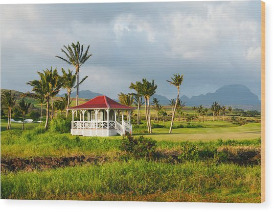 Golf Course On Poipu Shores Kauai Wood Print