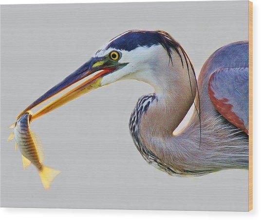 Gone Fishing Wood Print by Paulette Thomas