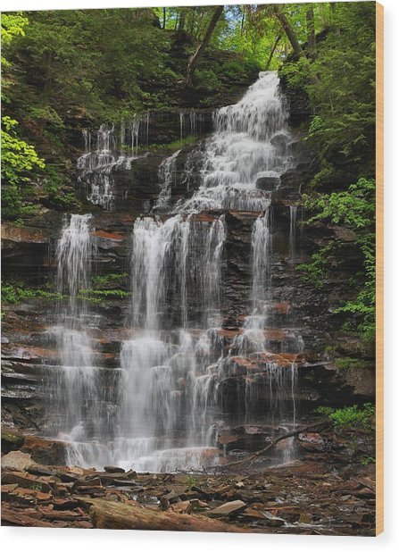 Gonoga Falls Wood Print