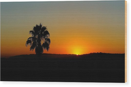 Good Evening Los Angeles Wood Print