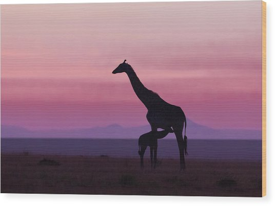 Good Morning Masai Mara 7 Wood Print
