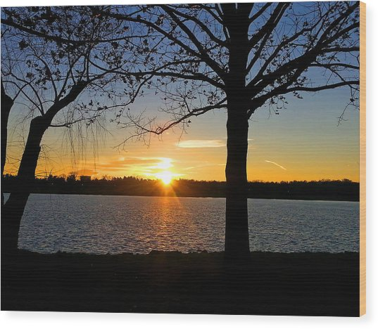 Good Night Potomac River Wood Print