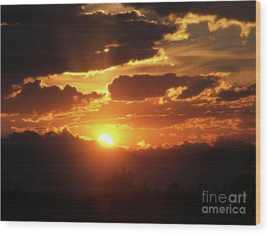 Goodnight Denver Wood Print