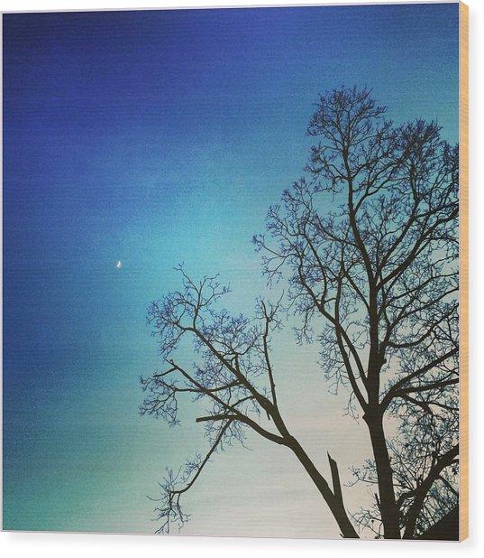Goodnight Moon Wood Print