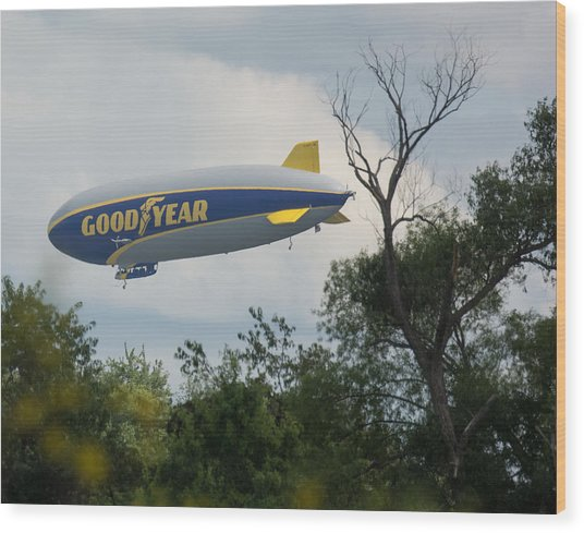 Goodyear Blimp Tree Top Flyer Wood Print
