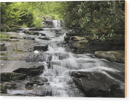 Goose Creek Falls Wood Print