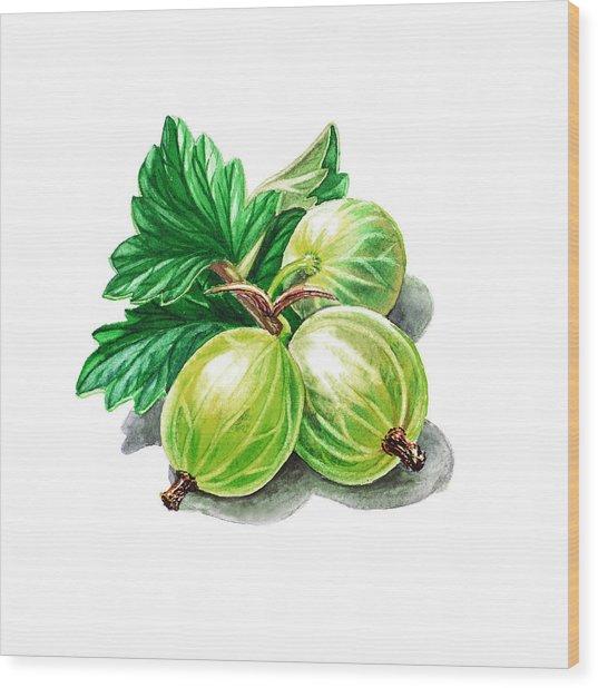 Gooseberry Painting Wood Print