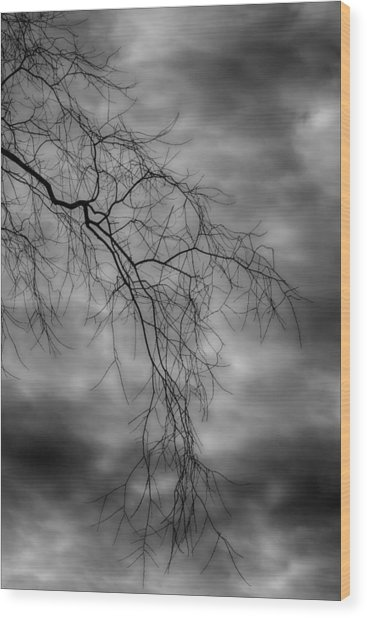 Gothic Sky Wood Print by Robert Ullmann