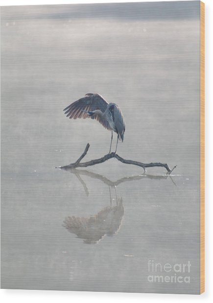 Graceful Heron Wood Print