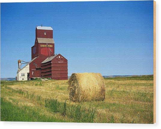 Grain Silo Saskatchewan Wood Print by Buddy Mays