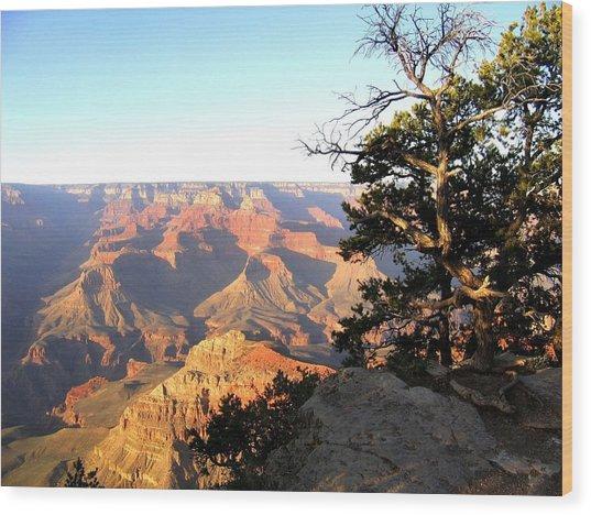 Grand Canyon 63 Wood Print