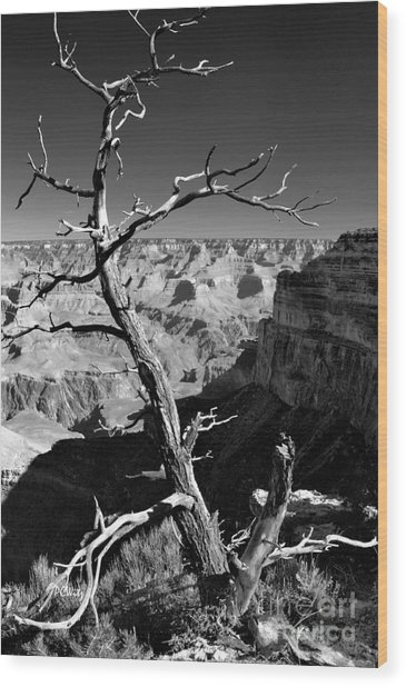 Grand Canyon Bw Wood Print