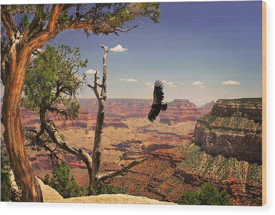 Grand Canyon California Condor Wood Print