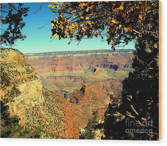 Grand Canyon Framed By Nature Wood Print by John Potts