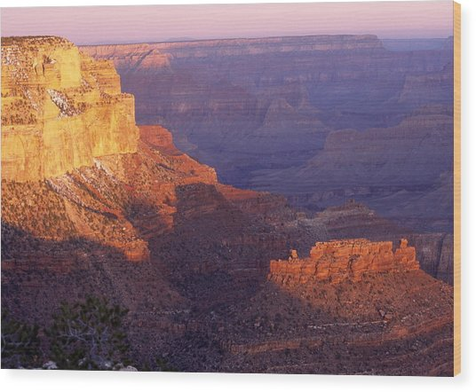 Grand Canyon From The South Rim Wood Print