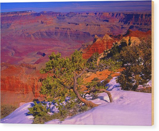 Grand Canyon In Winter Wood Print