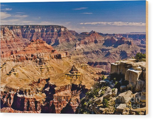 Grand Canyon Painting Wood Print