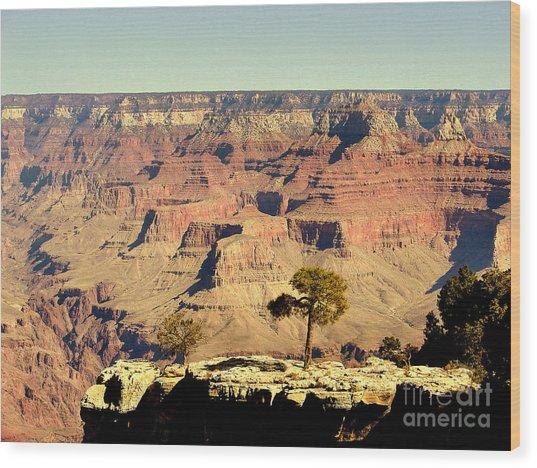Grand Canyon Usa Wood Print by John Potts
