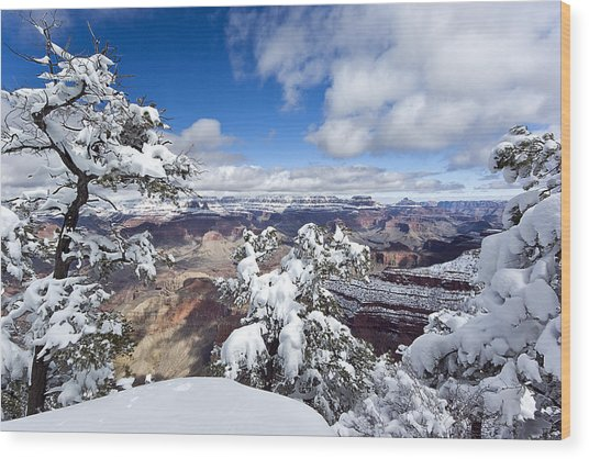 Grand Canyon Winter - 1 Wood Print