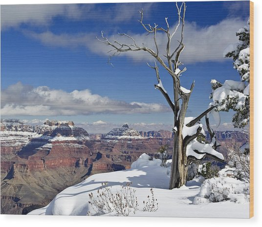 Grand Canyon Winter -2 Wood Print