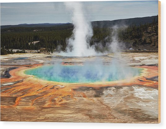 Grand Prismatic Spring, Yellowstone Park Wood Print