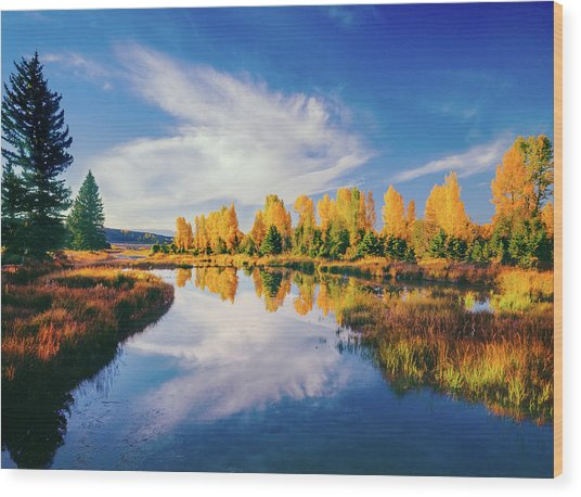 Grand Teton National Park, Wy Wood Print by Ron thomas
