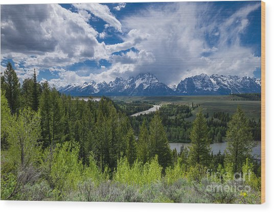 Grand Teton Np Wood Print