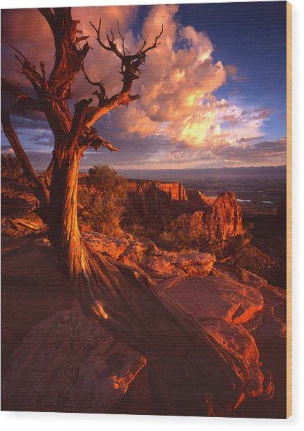 Grand View Point Sunrise Wood Print