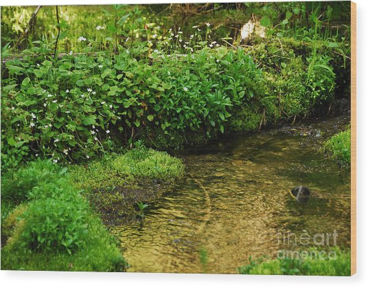 Granite Creek Wood Print