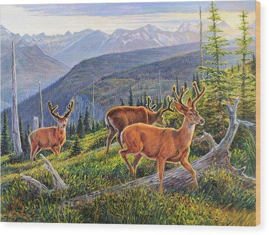 Granite Park Bucks Wood Print