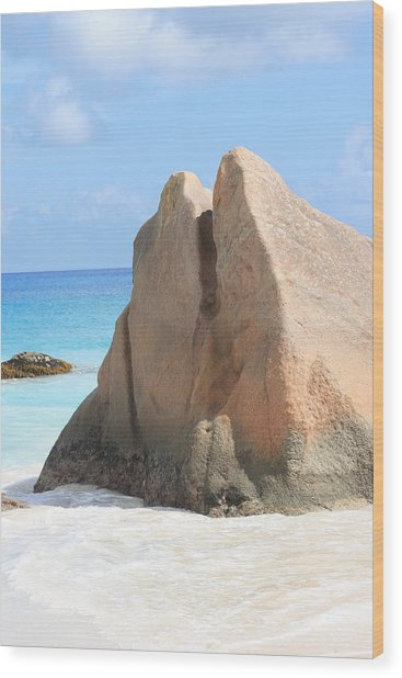 Wood Print featuring the photograph Granite Rock by Debbie Cundy