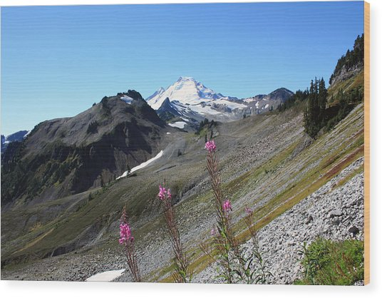 Grant Peak Of Mount Baker Wood Print