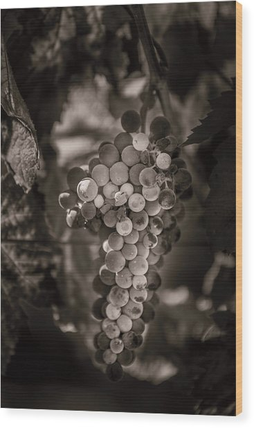 Grapes In Grey 3 Wood Print by Clint Brewer