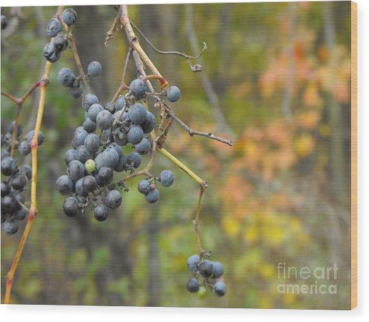 Grapes Left Wood Print