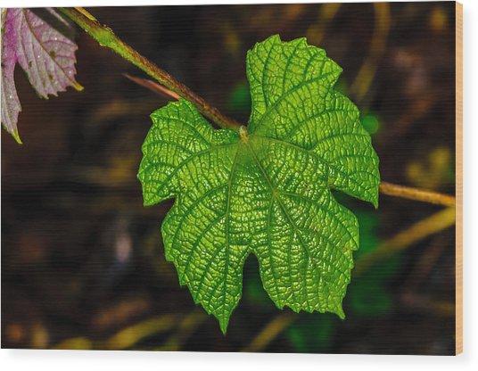 Grapes Of Rath Wood Print