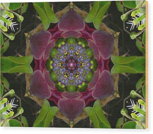 Grapevine Portal Mandala Wood Print