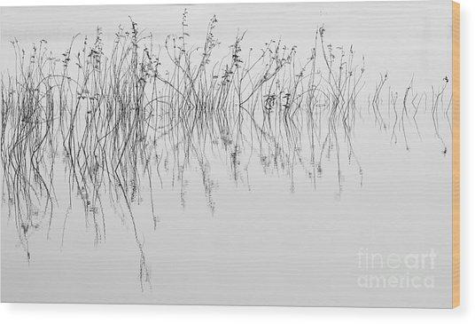 Grass In Lake Wood Print