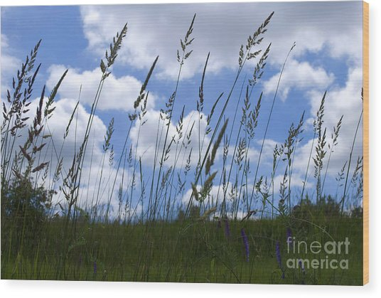 Grass Meets Sky Wood Print