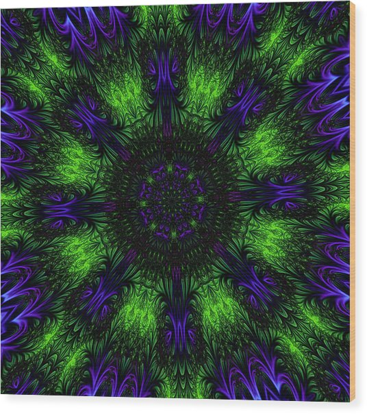 Grass Views Kaleidoscope Wood Print