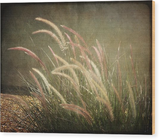 Grasses In Beauty Wood Print