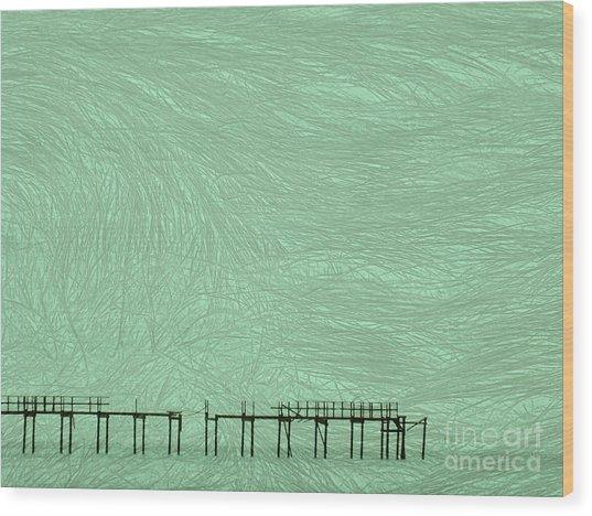 Grassy Flats Wood Print