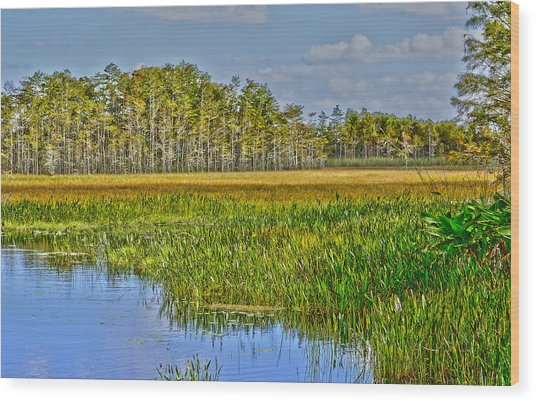 Grassy Waters Wood Print